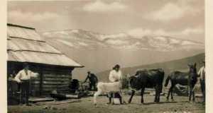 Ikerhavas, 1925 (Fotó: www.pohlednice.sbiram.cz)