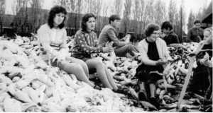 Tengerihántás Bilkén 1975-ben (Fotó:www.irshava-foto.org.ua/bilky)