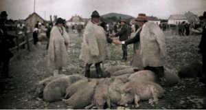Kárpátaljai állatvásár 1927-ben (Fotó: www. karpatskijobjektiv.com)