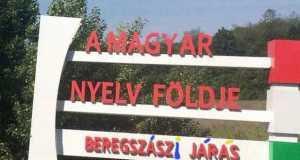 koogtato_almagyar