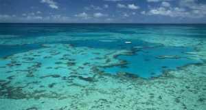korallzatony tenger